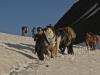Horse Packing in the Muskwa Kechika, 2011